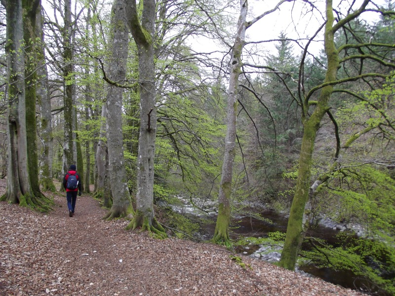 blair atholl walk