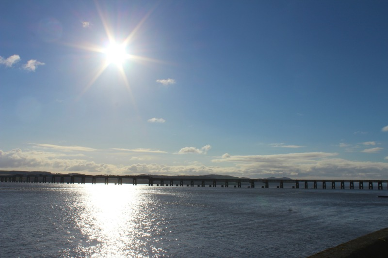 dundee 6