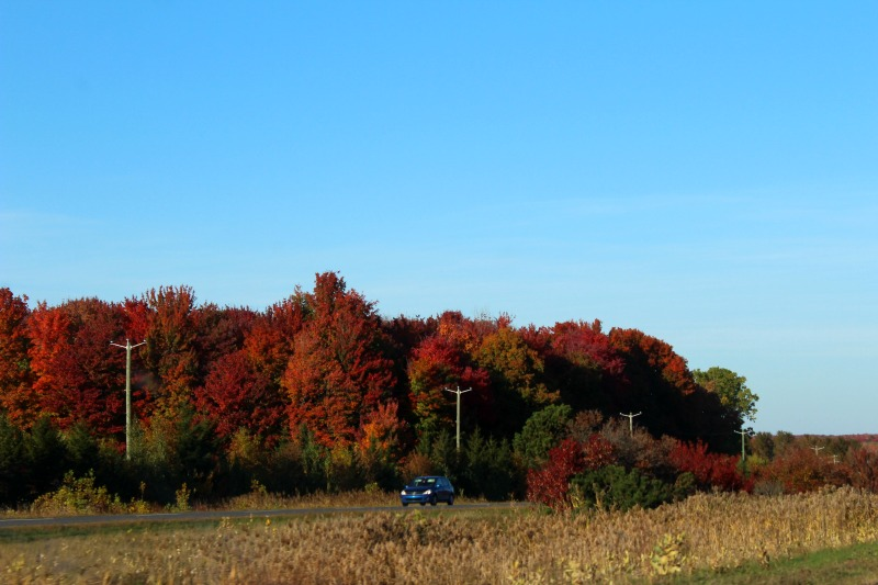 autumn-in-canada-1