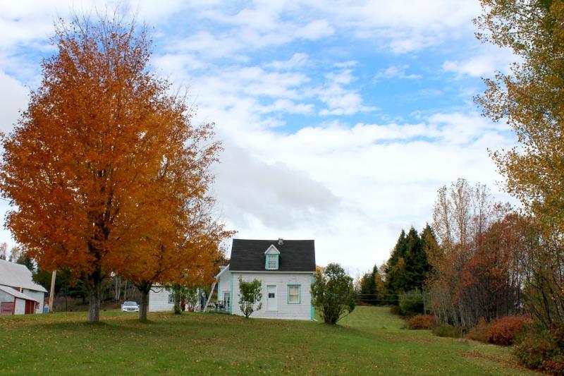 autumn-in-canada-14