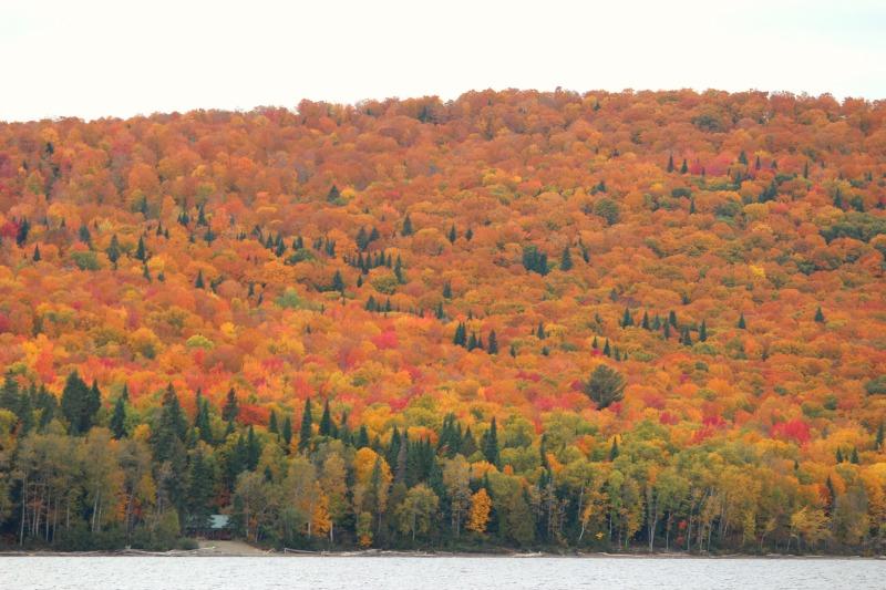 autumn-in-canada-4