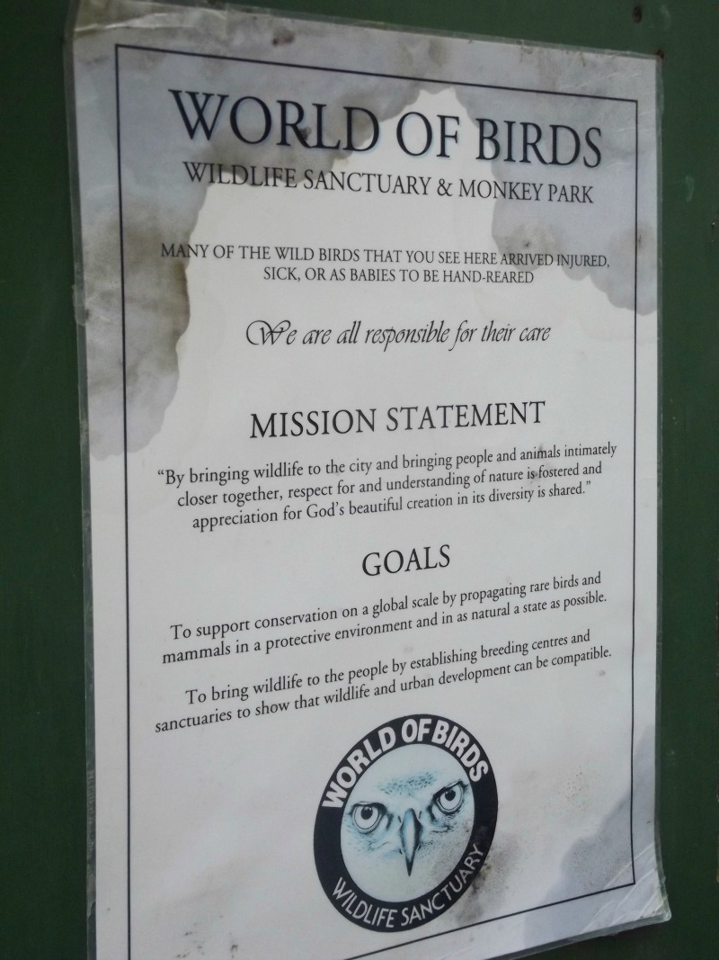 world of birds mission