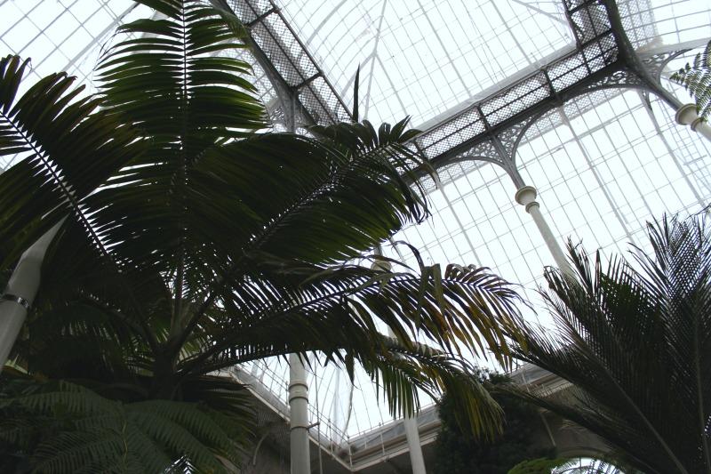 edinburgh botanics 1
