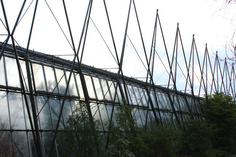 edinburgh botanics 15