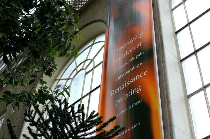 edinburgh botanics 5