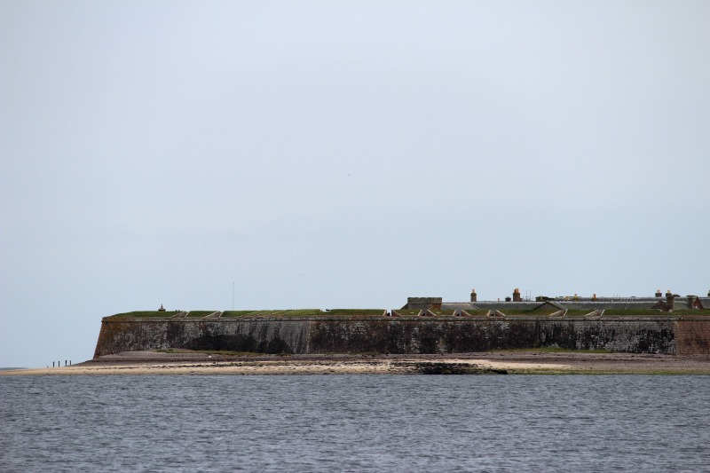 dolphins fort george
