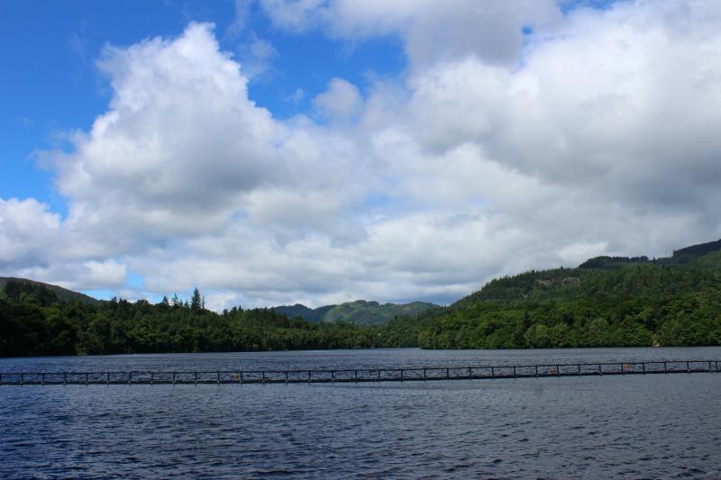 salmon and mountain 3