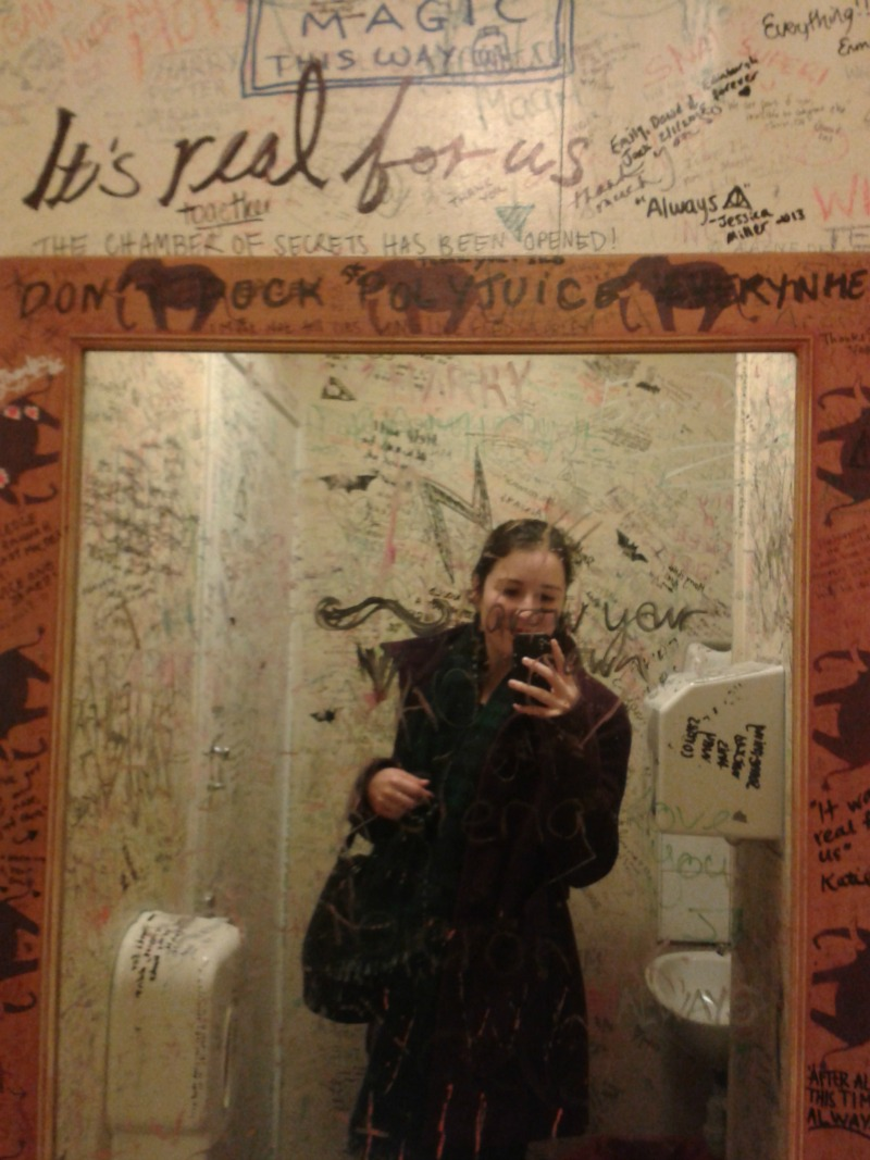 elephant house bathroom